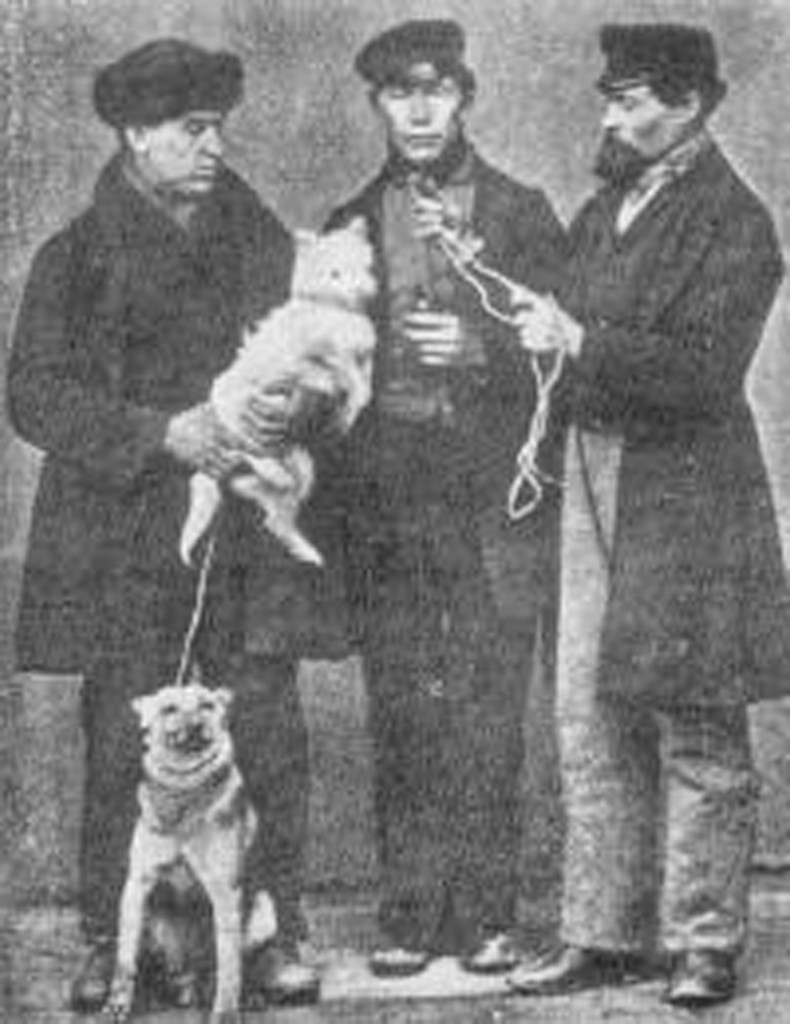 the creator of the doberman historical photo of herr dobermann