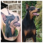 Doberman Dog Tattoos