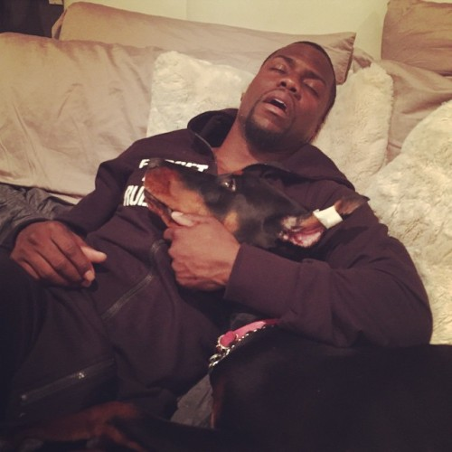 kevin hart sleeping with pet dog
