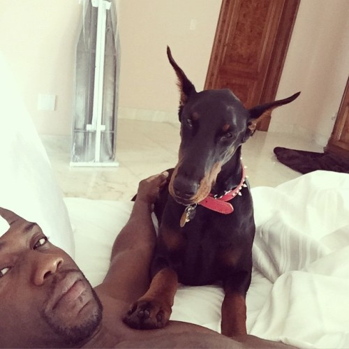 kevin hart with his new dog