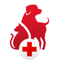 first aid for dog app