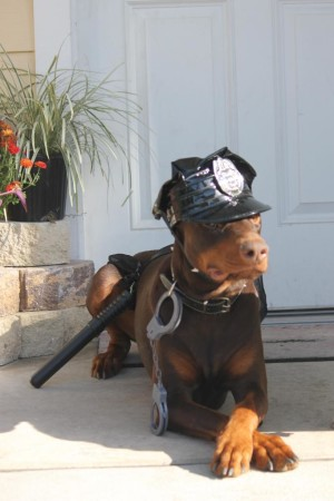 red doberman cop costume