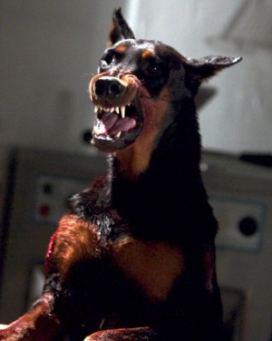 zombie doberman dog from movie resident evil